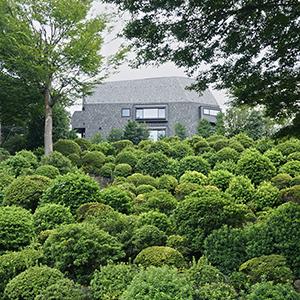 鎮守の杜に浮かぶ借景の家