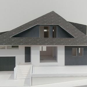 大屋根の家
